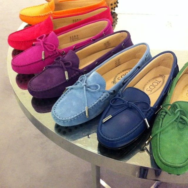 Tod's Rainbow.........our dog Summer has decided she likes my Tod's which has become an expensive habit!