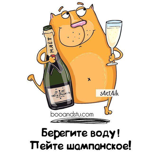 Цветных, смешные картинки про шампанское