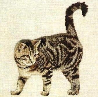 кошки | Записи с меткой кошки | Там, на неведомых дорожках ...