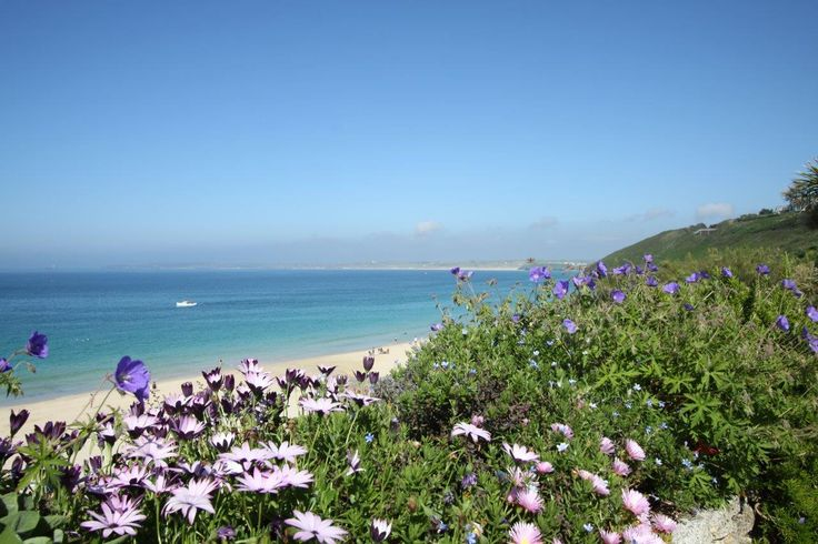 The view across St Ives bay, capturing some summer flowers. #September #beach