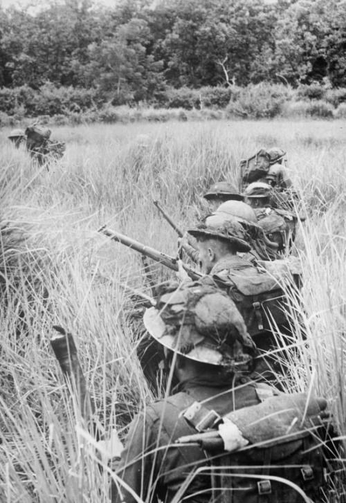 Men of the Royal Welsh Fusiliers, 29th Infantry Brigade, 36th Infantry Division, use paddy fields for cover as they approach Japanese positions around Pinbaw, 1944.
