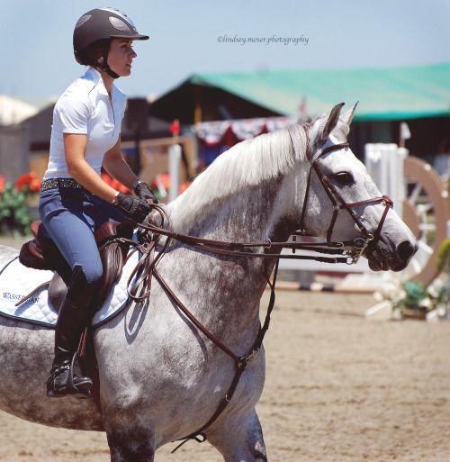 so it goes Photographer | Equestrian | ON | Horsey Bits Ambassado