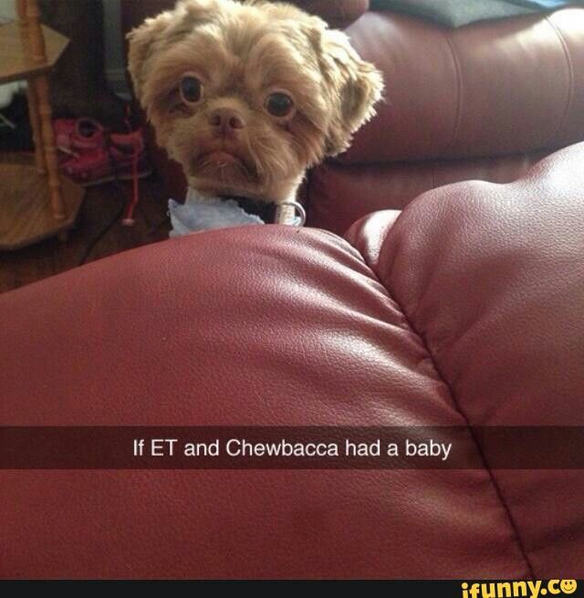 E.T and chewbacca had a baby?! NOPE.