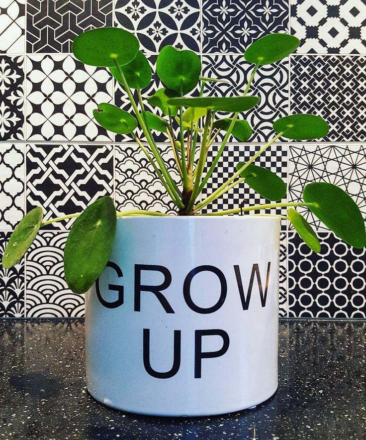 #kwantuminhuis Bloempot GROW UP @michel_mijnster