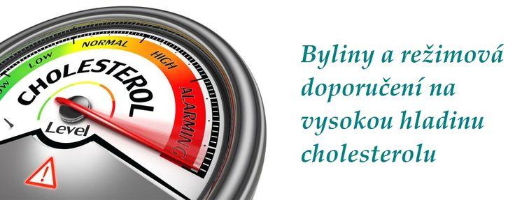 vysoky cholesterol byliny bylinky babske rady tinktury rezimova opatreni a doporuceni