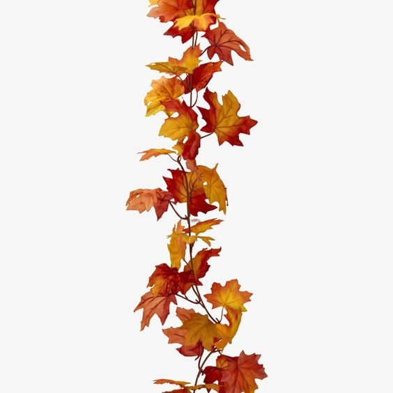 Red Maple Leaf Png And Clipart Leaf Garland Autumn Inspiration Maple Leaf