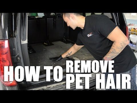 How to clean dog hair , cat hair from Carpet - YouTube