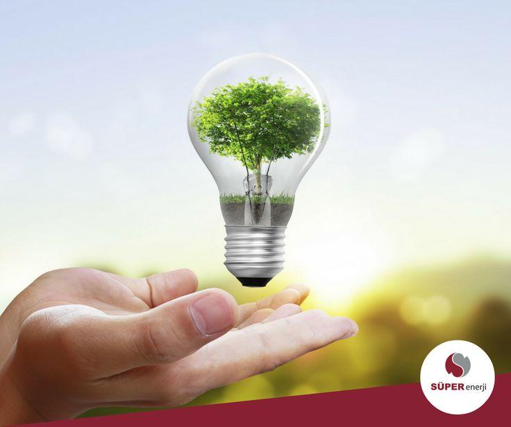 Aylık elektrik faturanız 130 ve üzerindeyse elektrik tedarikçinizi siz seçebilirsiniz! Süper Enerji'nin avantajlarını keşfetmek için:
