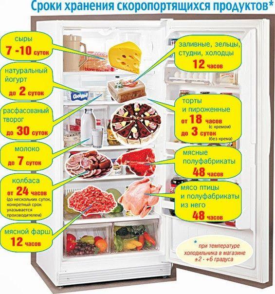 сроки хранения скоропортящихся продуктов в холодильнике