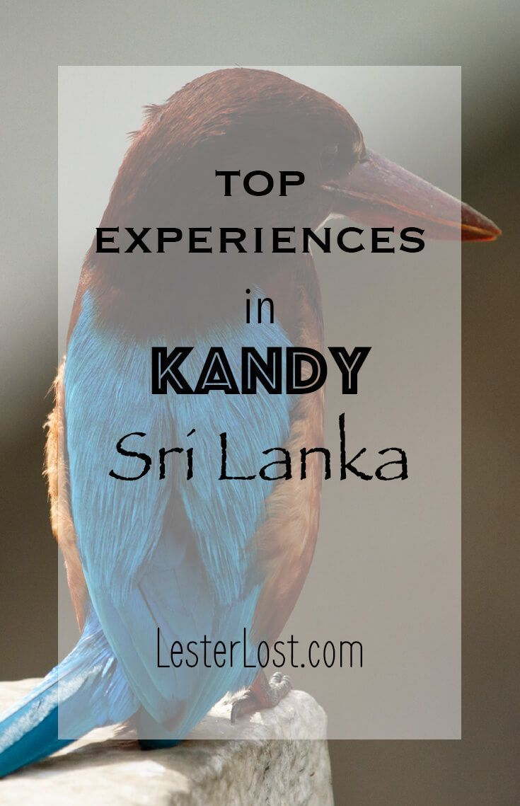 Kandy is the former capital of Singhalese kings and will welcome you for many fascinating cultural experiences. Enjoy your visit to Sri Lanka! via @Delphine LesterLost #travel #srilanka #travelblog