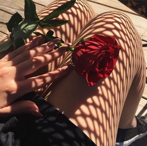 #rose #fashion #pretty #flowers #vintage #cute #aesthetic #grunge  https://weheartit.com/entry/299712888