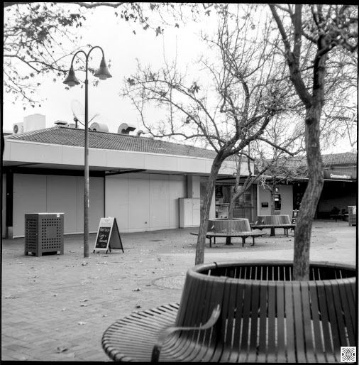 My Canberra - on film mainly Dickson shops, back in 2015  Flexaret, Kodak T-Max 100  www.pavelvrzala.com  #Australia #Canberra #Dickson #DicksonShops #tree #street #public #space #city #Kodak #TMax100 #film #Flexaret #blackandwhite