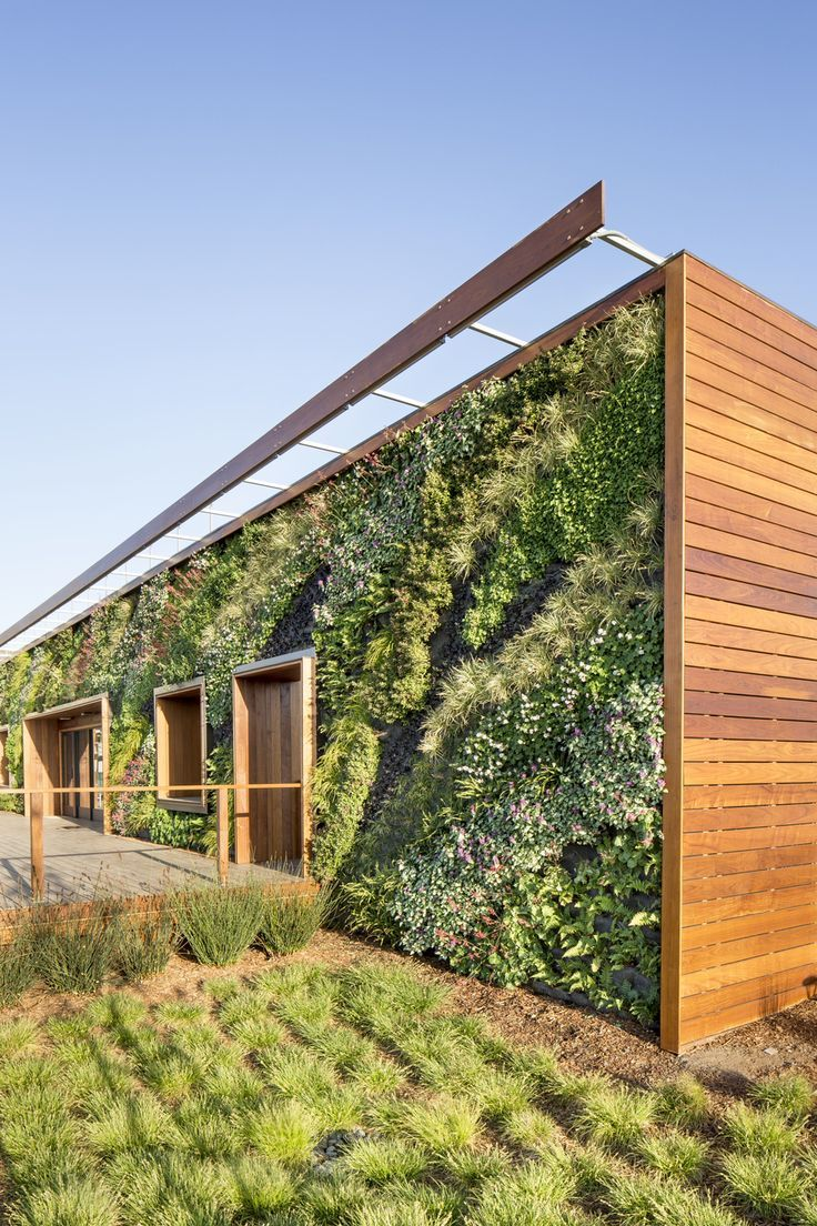 Gallery of Living Walls - Habitat Horticulture. How cool is this! NB&T can make plant labels for your living walls.