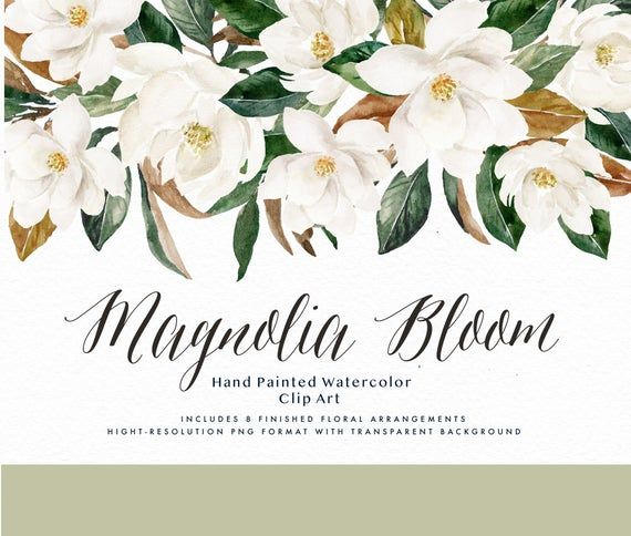 Watercolor Floral Clip Art Magnolia Bloom Small Etsy Floral Watercolor Flower Line Drawings Watercolor Floral Wedding Invitations