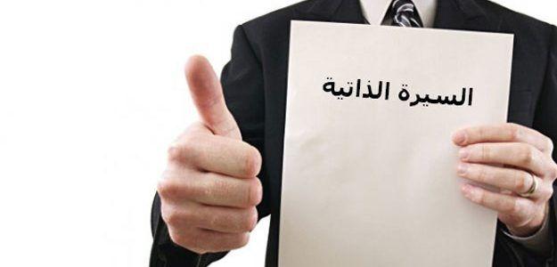 نموذج Cv عربى إنجليزى 2017 جاهز للتعبئة وللتعديل فارغ Pdf 2018 تحميل نماذج السيرة الذاتية بصيغة Cv Template Free Resume Templates Resume Template Professional
