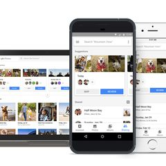 Meow it's even easier to find your furry friends in Google Photos