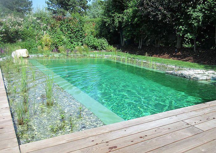 Naturpool Im Sommer Pool Landscaping Natural Pool Natural Swimming Ponds