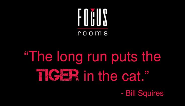 We're in it for the roar, not the meow! ‪#‎MondayMotivation‬ ‪#‎FocusRooms‬