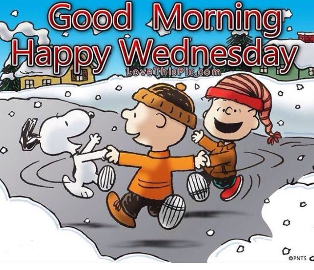 Good Morning Snoopy Wednesday : Best images about wednesday on pinterest hump day
