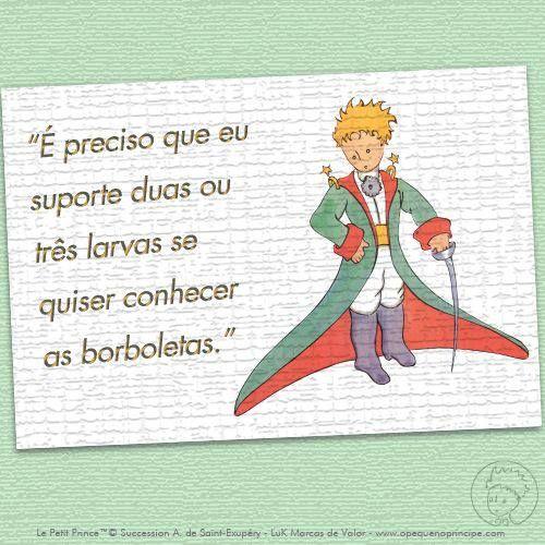 O Pequeno principe SEMPRE CONHECI MINHA BORBOLETA.