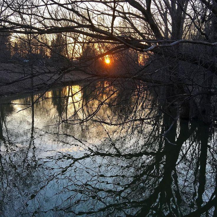 Rivière aux Pins  #boucherville #sunset #river #spring #printemps #explorecanada
