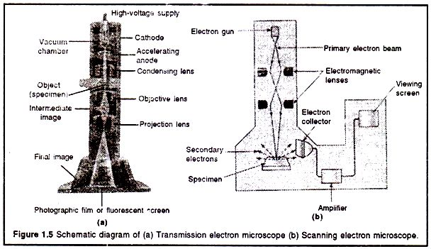 52d8c4ad5244a50a5af7c2282dc230a0 electron microscope transmission schematic diagram of (a) transmission electron microscope (b  at n-0.co
