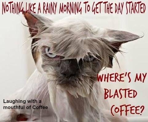 NOTHING LIKE A RAINY MORNING TO GET THE DAY STARTED. WHERE'S MY BLASTED COFFEE?