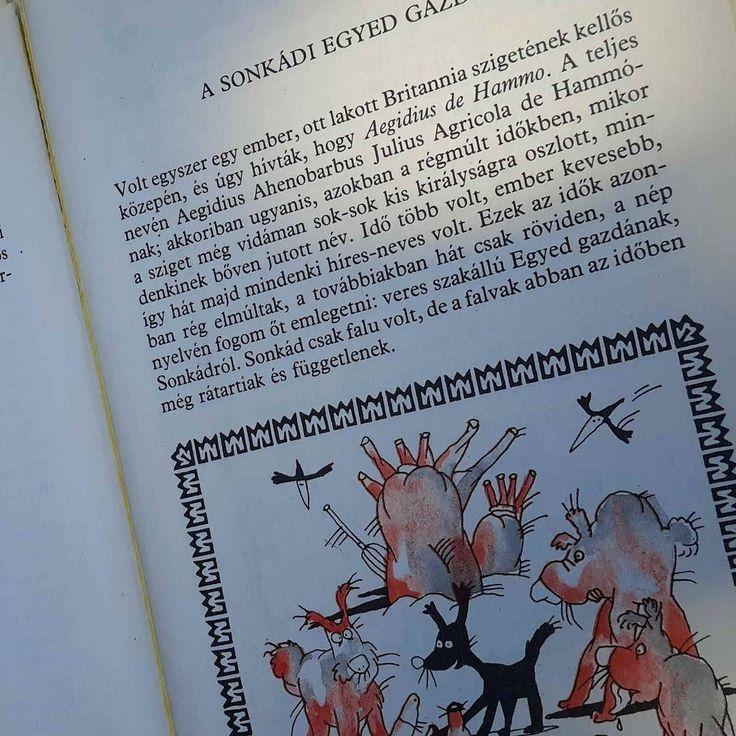 A világ egyik legkellemesebb élménye megtalálni egy régi könyvet. #jrrtolkien #könyvek #hétvége #pécs #nosztalgia #oriandras