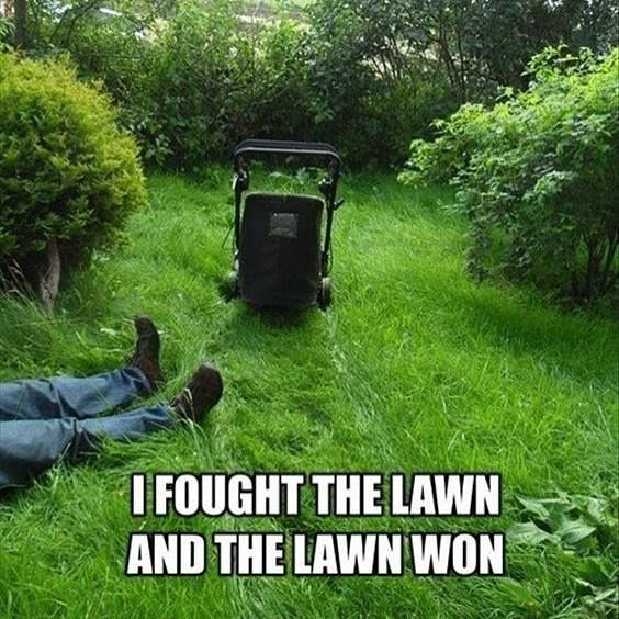 Handsome Lawn Service