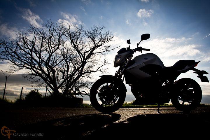 Uma moto por dia: Dia 87 – Yamaha XJ6N   Osvaldo Furiatto Fotografia e Design