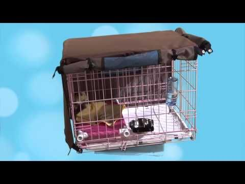 Crate Training For Small Dogs