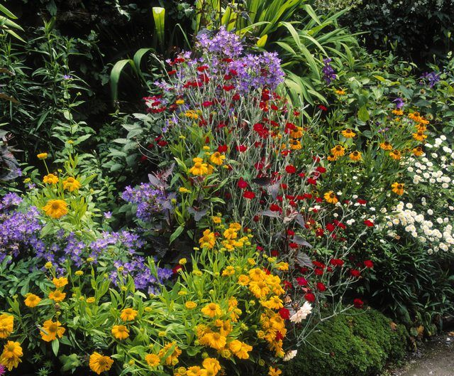 Recommended Size for a Flower Bed | Hunker