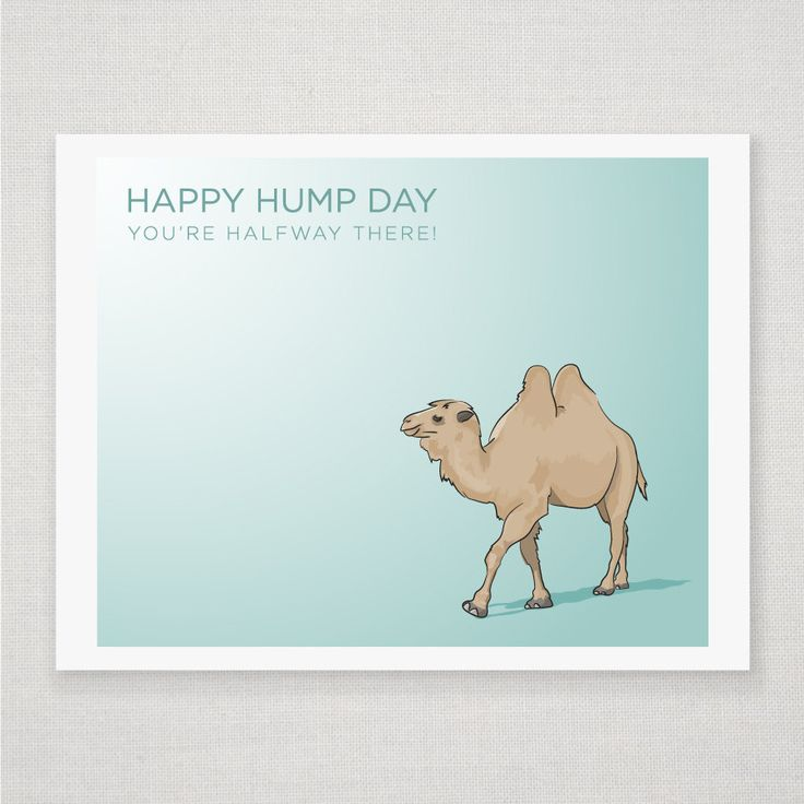 Happy Hump Day Camel - Illustrated Print. #print