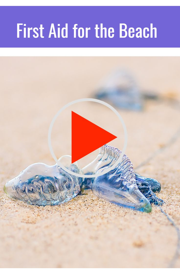 """How to treat Bluebottle stings ~ Video by Bondi Lifeguard """"Harries""""    #beachsafety"""