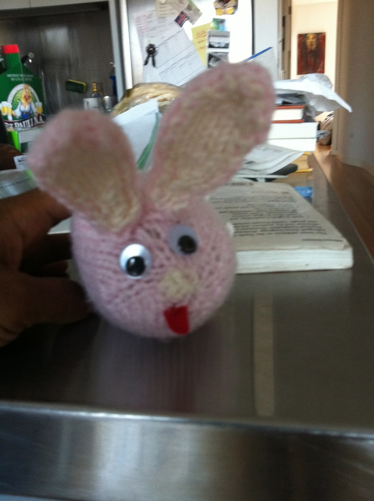 My first knit animal.  It's a googly eyed rabbit.  I didn't know how to knit eyes, and I didn't know you could purchase plug in eyes