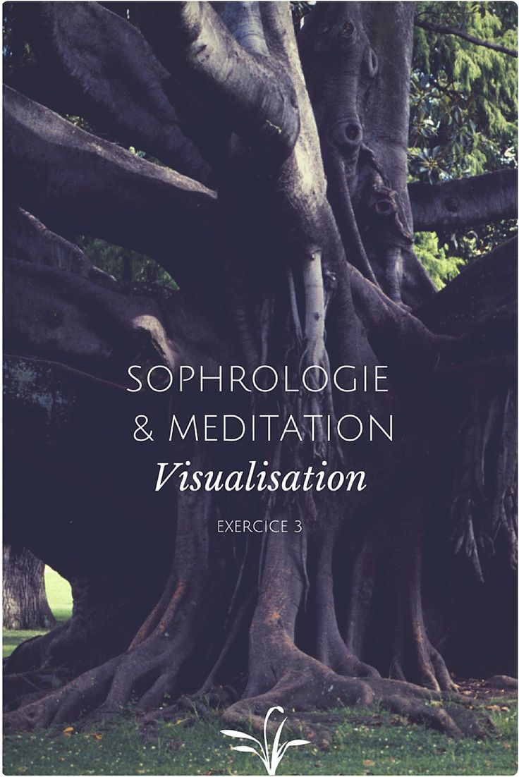 Sophrologie & meditation exercice 3: visualisation