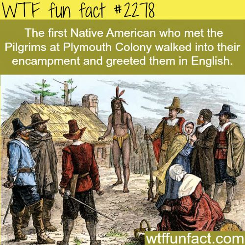 The first native american who met the pilgrims wtf fun for Good facts about america