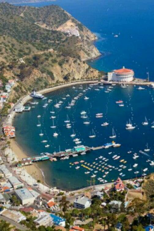 17 best images about i catalina island on pinterest for Catalina bay