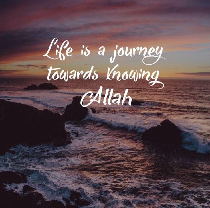 Quotes About Love: 3700 Best Images About Islamic Quotes On Pinterest