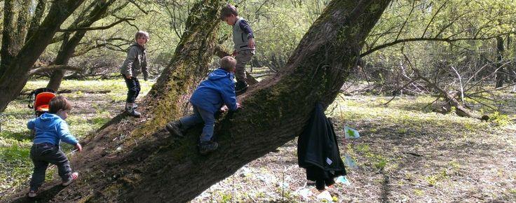 BSO activiteiten, buiten in de natuur zijn, Kinderfeestje in het bos