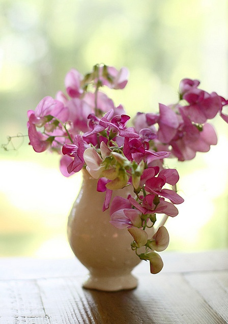 I love Sweet Peas!Sweets Peas Bouquets, Guest Bedrooms, Vases, Sweet Peas, Flower, Photos Shared