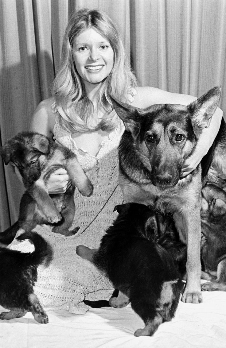 28 Best Mary Millington Images On Pinterest  Mary, Cult Movies And Movie Stars-1421