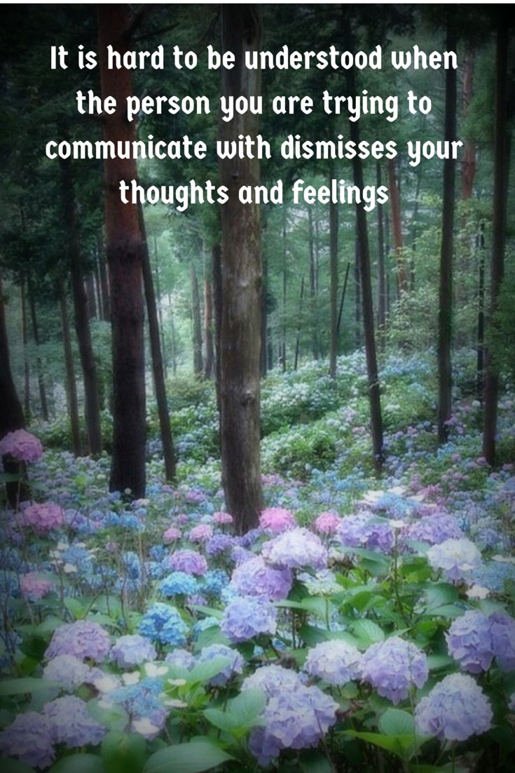 It is hard to be understood when the person you are trying to communicate with dismisses your thoughts and feelings