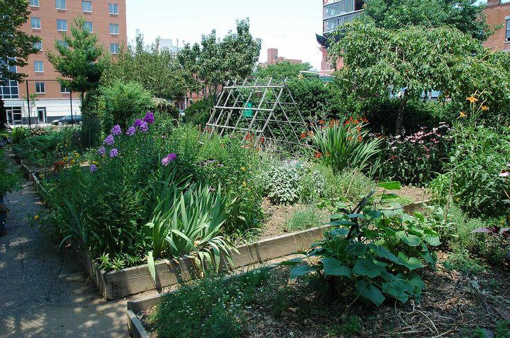 49 best Community Gardens images on Pinterest   Gardening tips, In ...