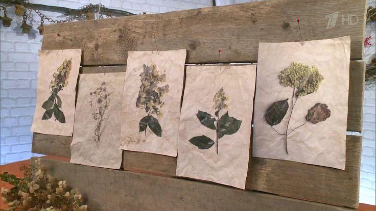 Как при помощи засушенных цветов и листьев сделать оригинальные обои?