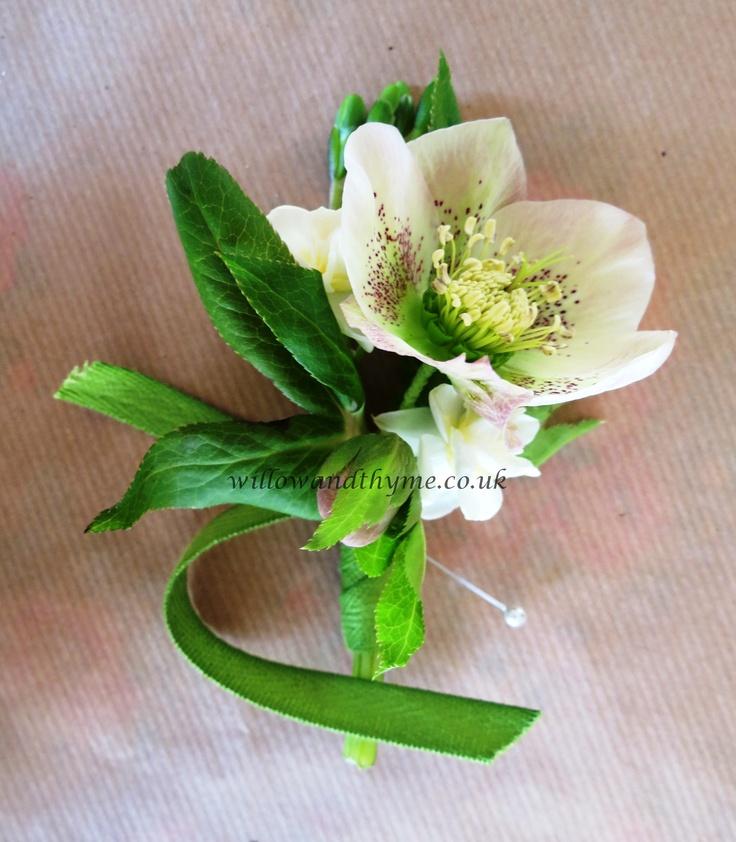 Spring Hellebore Buttonhole