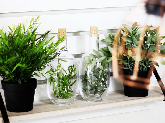 Budget interieurtip: IKEA Sinnerlig flessen met (nep)planten. (Budget interior IKEA Hack: Sinnerlig bottles with fake plants.)