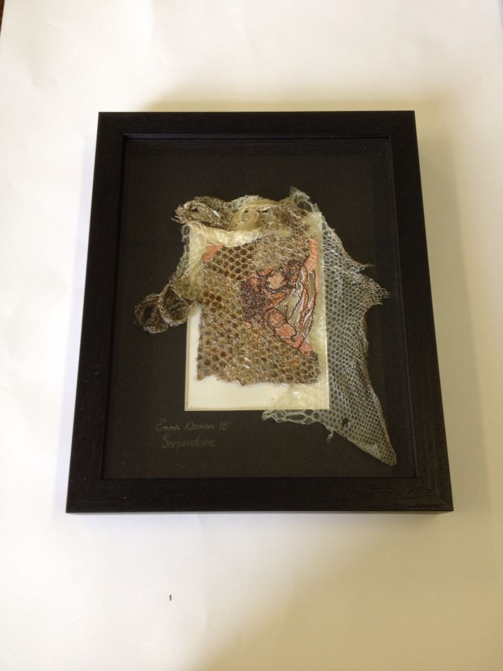 "This is a piece from a new collection called Serpentine. The piece is made using a combination of freestyle embroidery on paper, with snake skin shedding's. It is mounted on a black white core mount in an 11""x8"" black shadow box frame."
