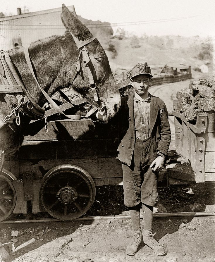"October 1908. Grafton, West Virginia. ""Harry and Sallie. Driver in Maryland Coal Co. Mine near Sand Lick. Was afraid to be photo'd because we might make him go to school. Probably 12 years old."" Photo by Lewis Wickes Hine."