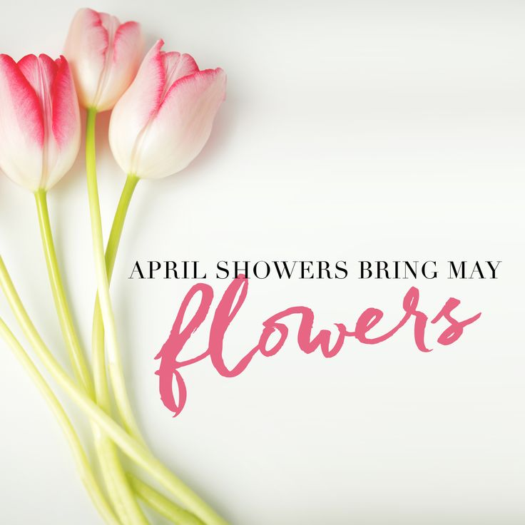April Inspirational Quotes Daily Inspiration Quotes